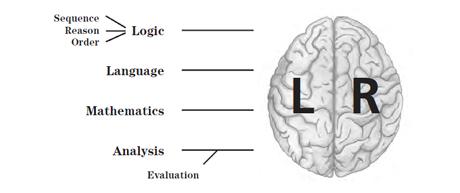 Left-Brain based learning