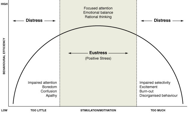 An analysis of the topic of the eustress stress