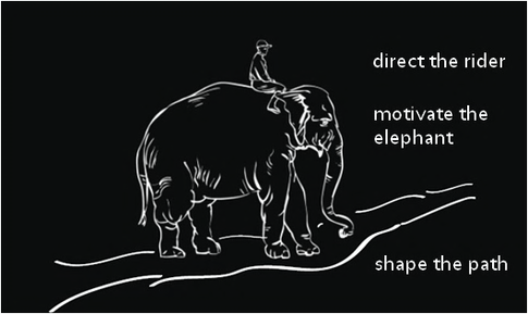 Direct the rider, motivate the elephant, shape the path